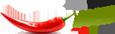 salsaweb.com.ua